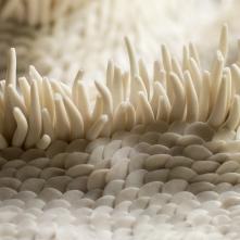 Internal Waves, series of mural sculptures, porcelain 24 cm x 8 cm ©Fondation Bruckner