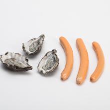Reproduction, nutrition et croissance, détails ©Baptiste Coulon