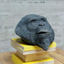 Tête de bonobo - 2015, Béton et oxyde, 35 cm x 30 cm x 28 cm